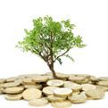 minia-investors