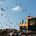 minia_landfill